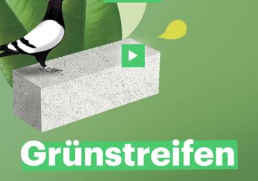 Grünstreifen_teaser